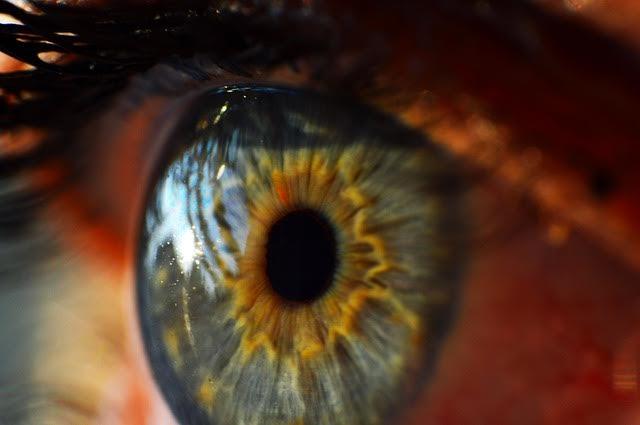 Cate tipuri de lentile de contact colorate exista?